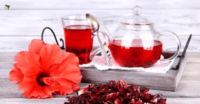 Health benefits of drinking hibiscus tea