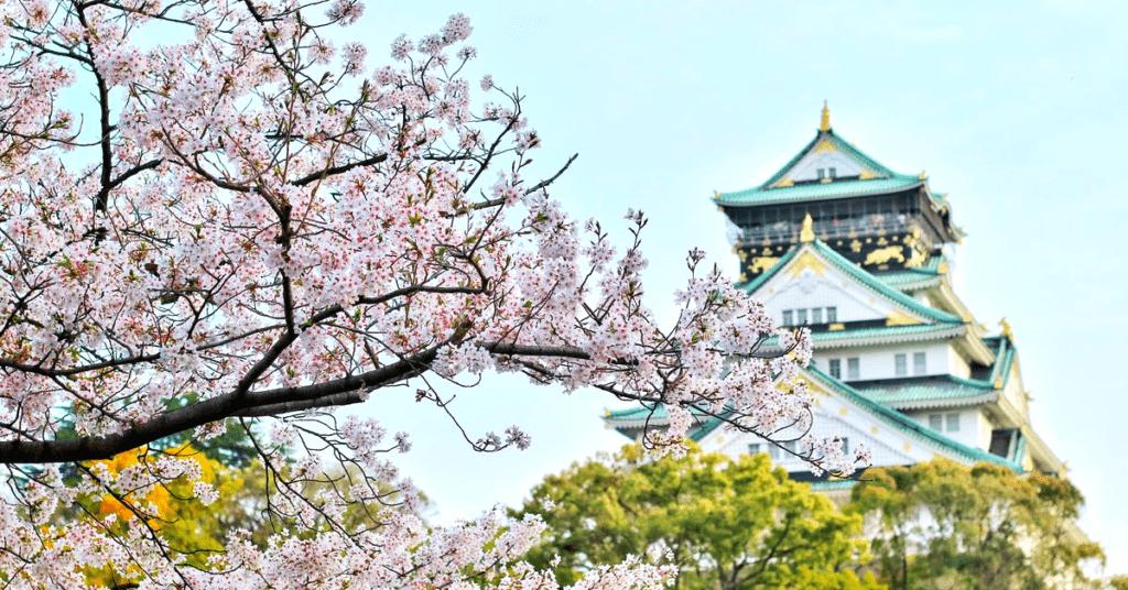 Japanese secret of longevity, ikigai