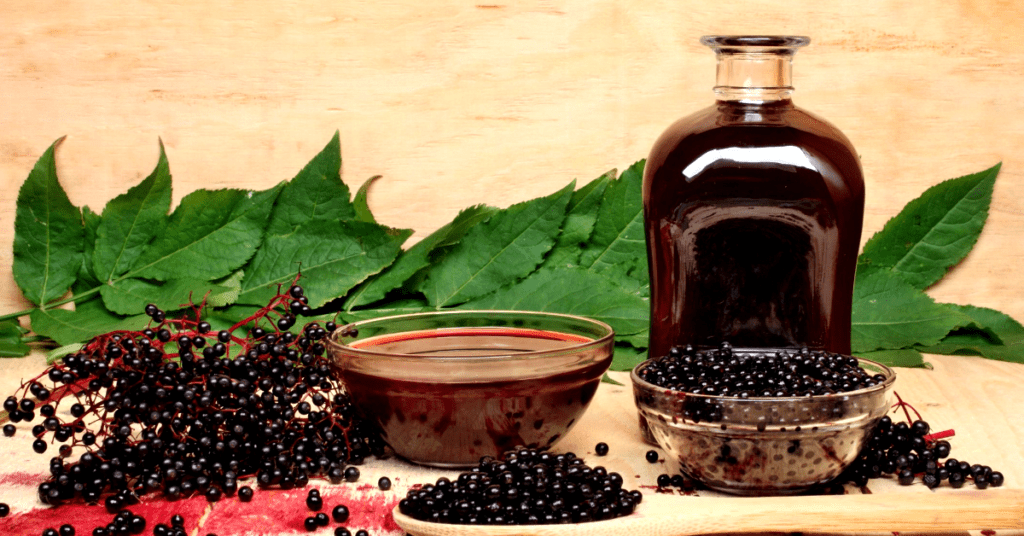 Elderberry tea, benefits,side effects