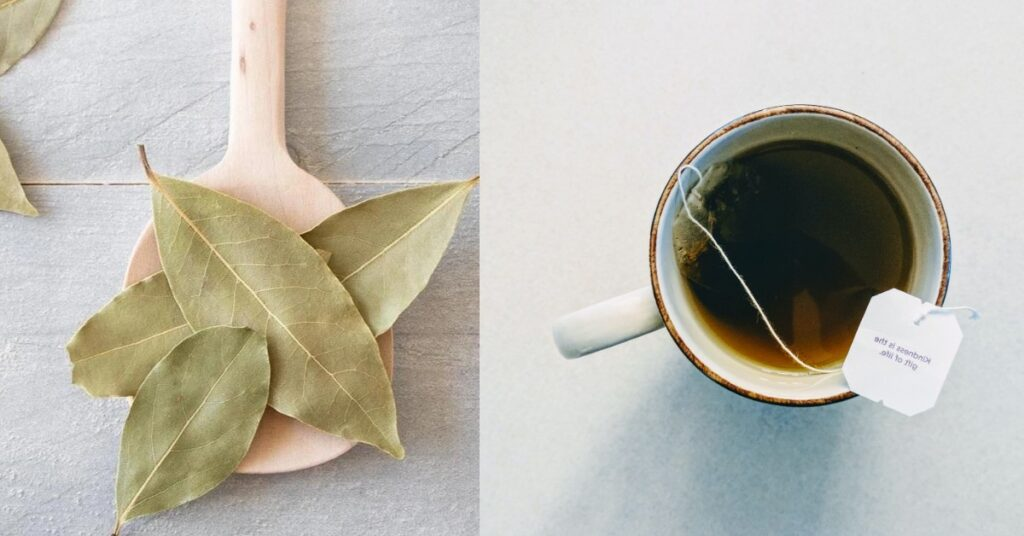 Bay leaf tea benefits and side effects