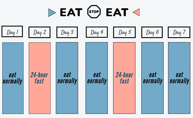 Fasting days on eat stop eat diet